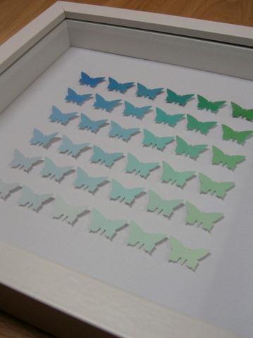 butterflies_framed